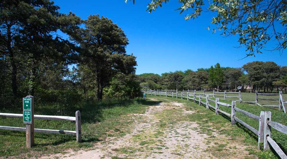 Trail Entrance at Hinsdale Park