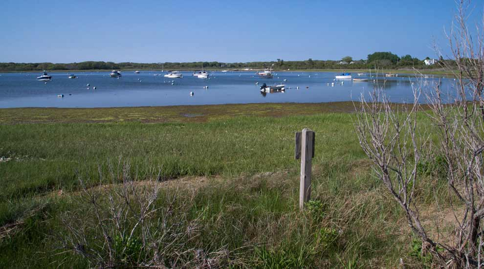 View of Polpis Harbor from Holly Farm