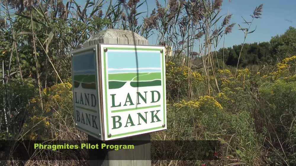 Land Bank Sign Post